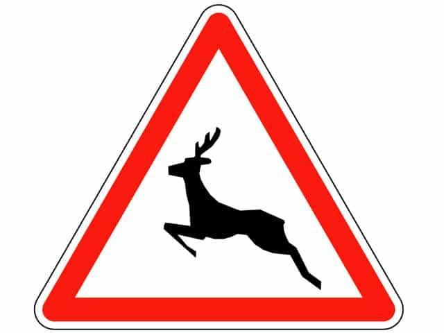 Trail Closed Nov. 7-22, 2020 for Hunting Season