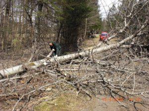 Trail Clean-Up Has Begun